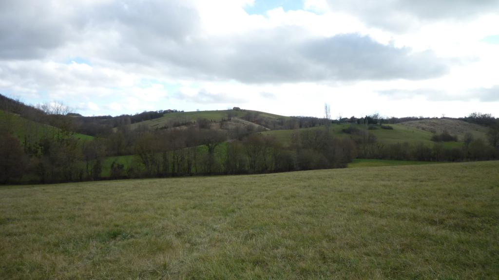 vente terrain L'ISLE EN DODON L'ISLE EN DODON 31230